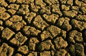 Facts About El Nino Phenomenon