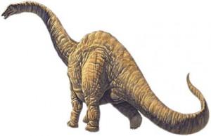 Argentinosaurus dinosaur