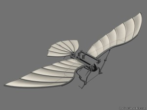 Da Vinci Flying Machine 3D