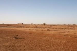 Explore desert landscapes