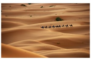 Facts about Deserts
