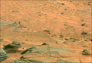 Martian life