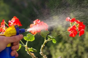 Pesticides Kill Pests