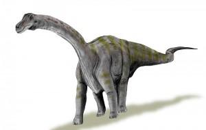 Rapetosaurus dinosaur