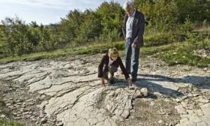 Sauropod foot track