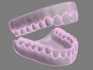 Teeth jaw