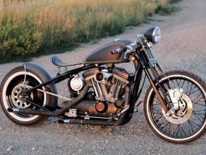 Harley-Davidson Sportster 1999