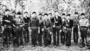 Vietnamese Guerrilla