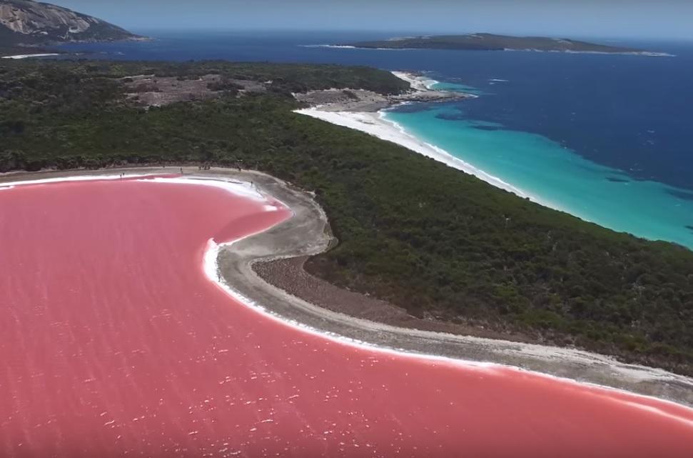 Beach Of Lake Hiller Hillier Pink