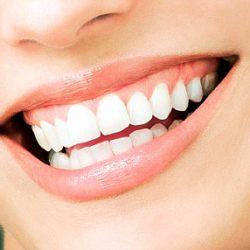 Teeth grow